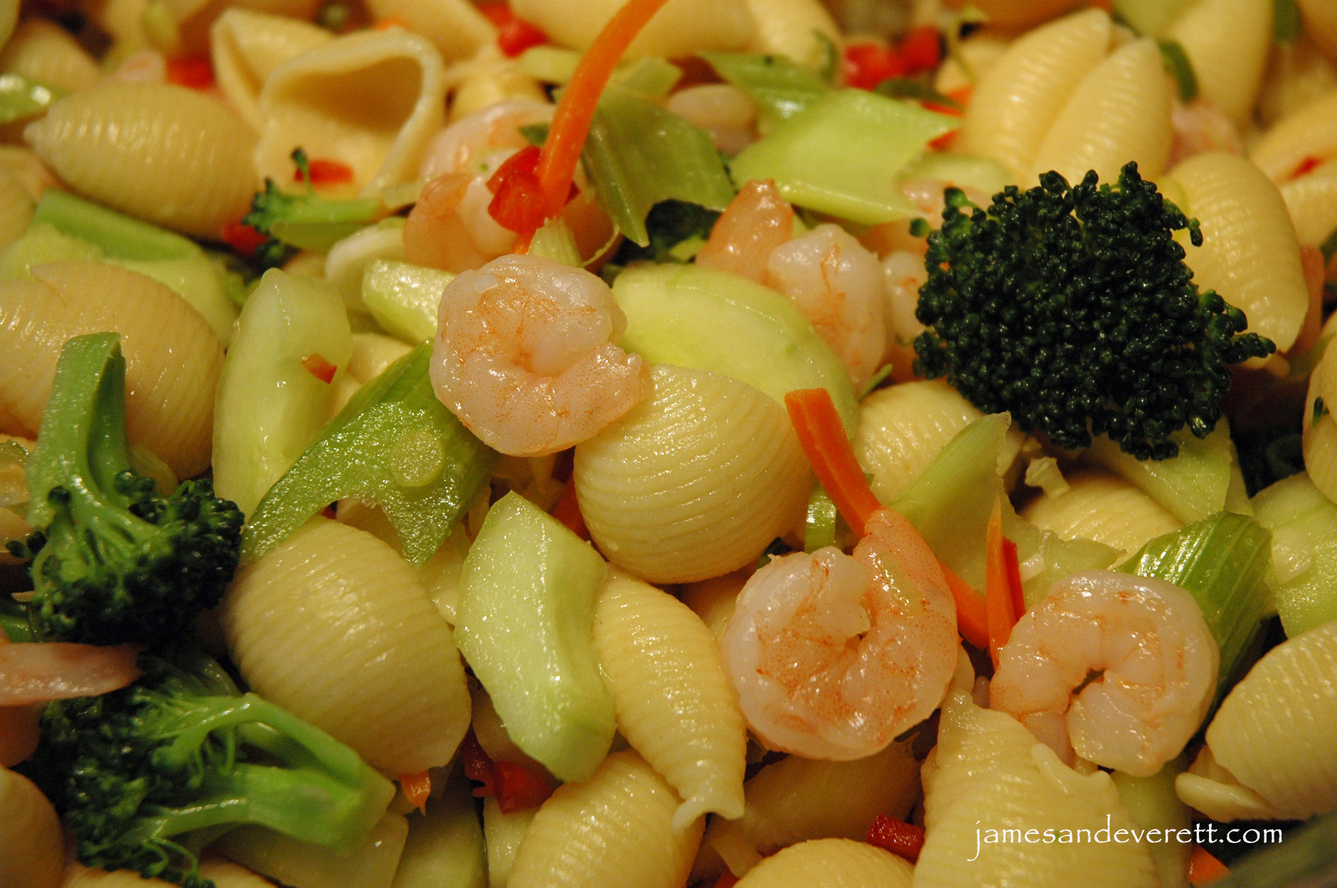 ... creamy shrimp and celery salad creamy shrimp and celery salad recipes