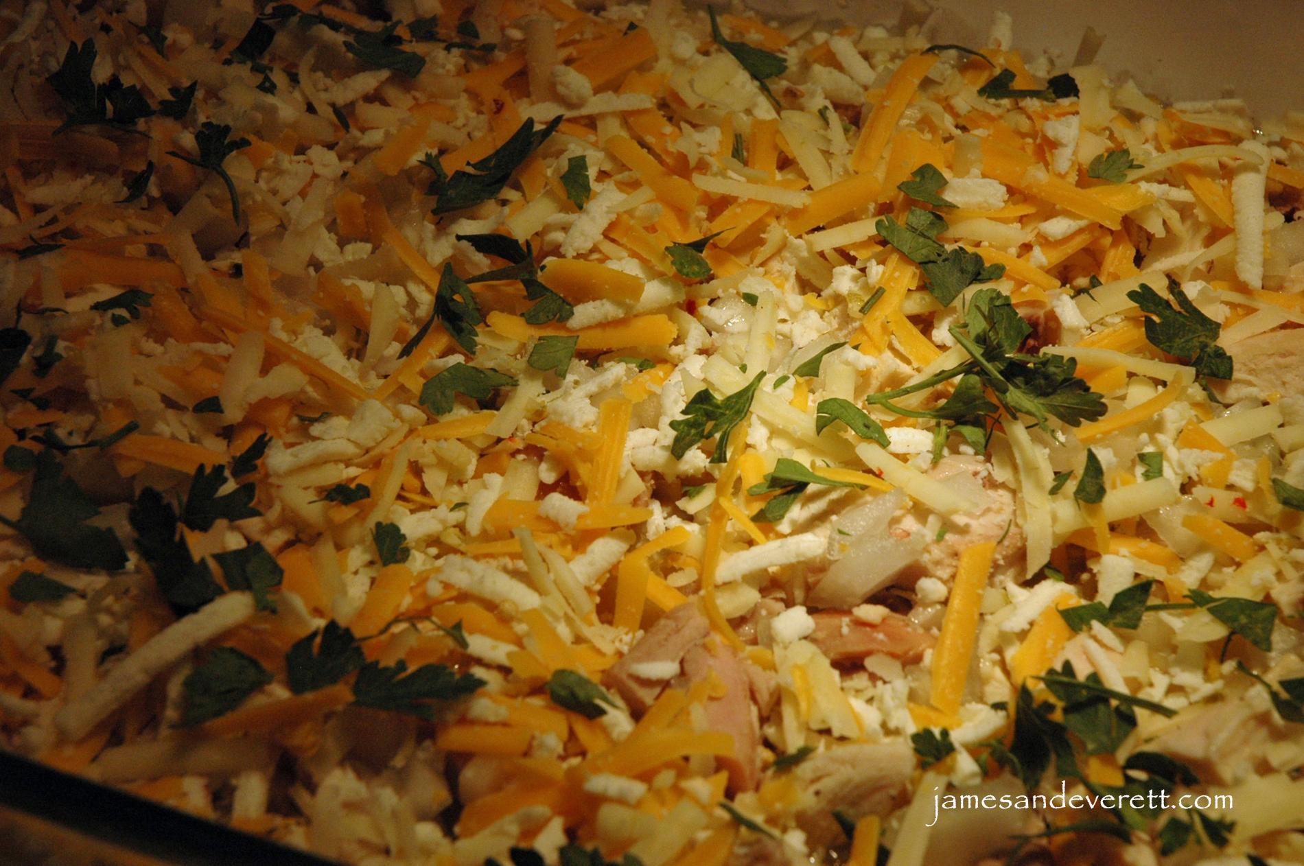 chicken enchilada 6