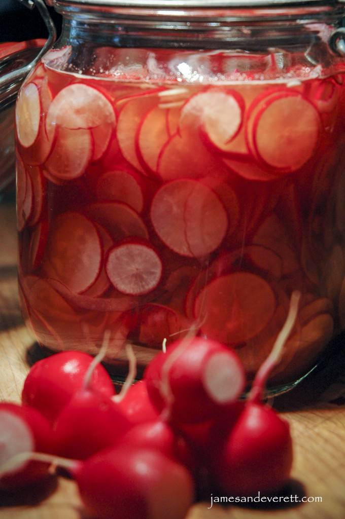 Pickled Radishes Recipe — Dishmaps