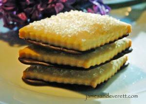 Shortbread Cookies with Orange Chocolate